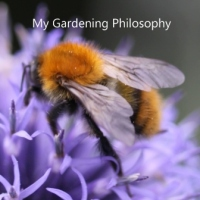My-Gardening-Philosophy