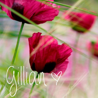 Poppies & Grass Gill