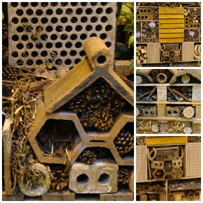 Homes for Wildlife Collage