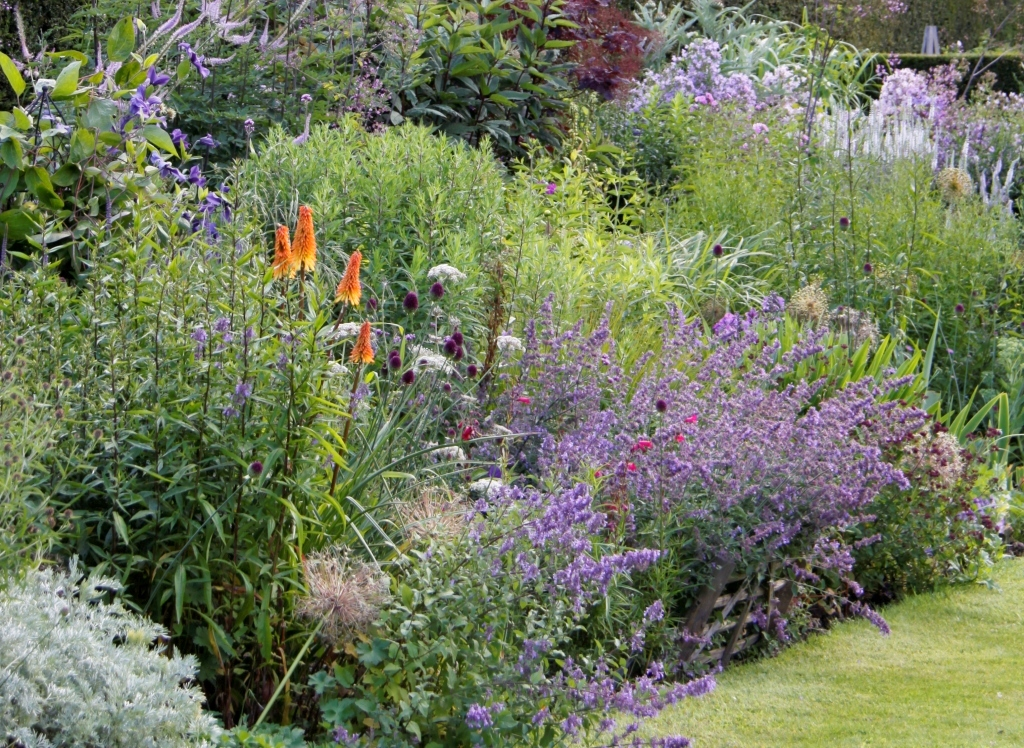 Summer border country garden uk for Planting schemes for small gardens