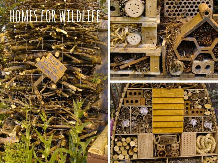Homes-for-Wildlife
