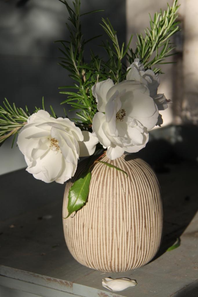 rose-rosemary