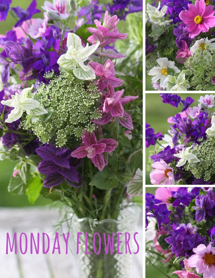 monday-flowers-opt