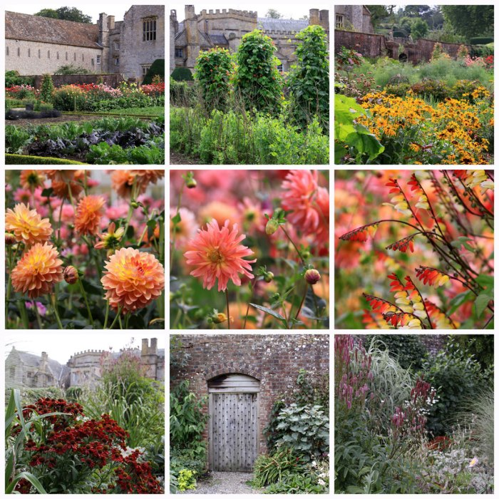 forde-abbey-collage