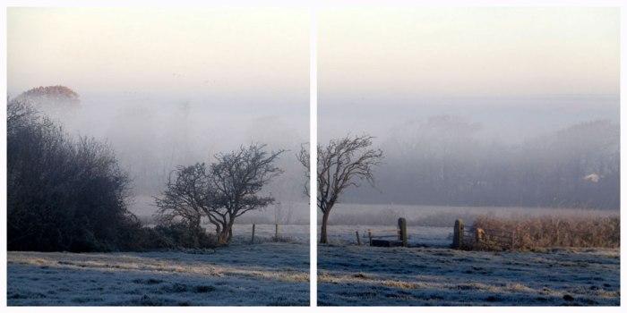 misty-frosty-morning